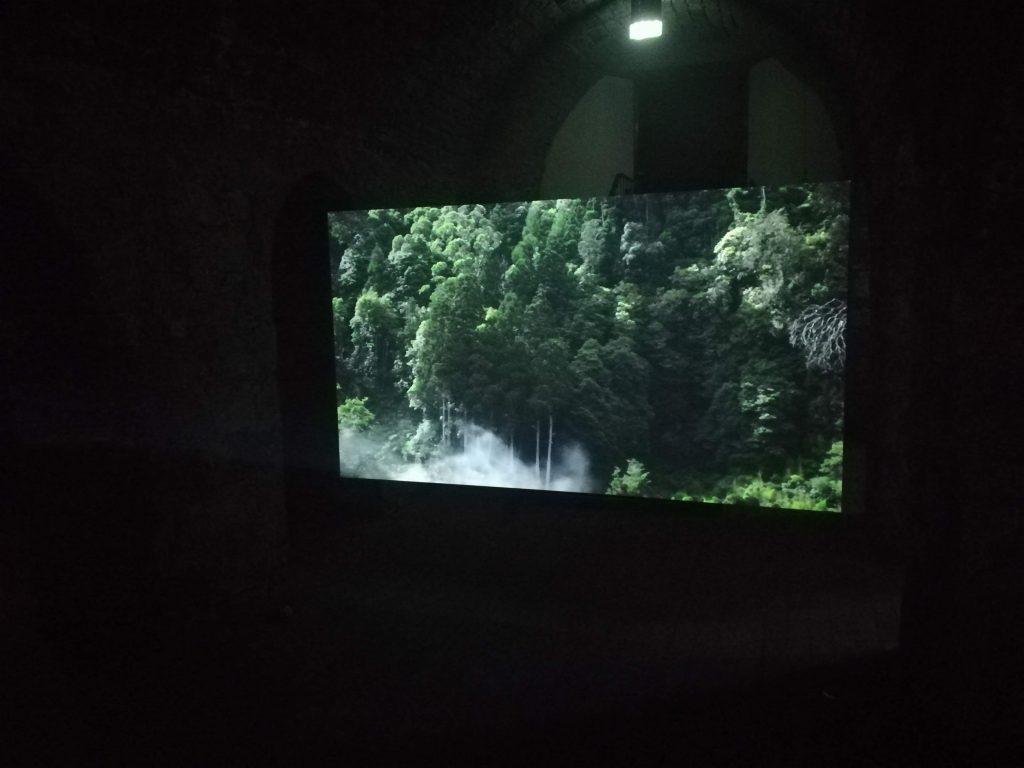 Astra (fumo), 2018 Vídeo, HD, 8' 5'' em loop, s/som